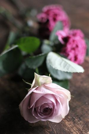 撮影小物のお花