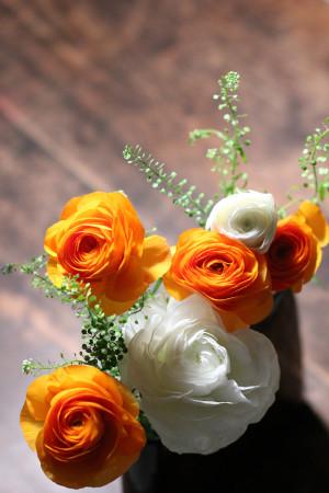 薄べったい花器にラナンキュラス……瀧へ